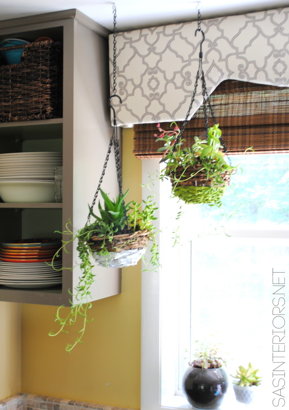 Creative Indoor Planter Ideas for Your Apartment - Customize with Paint