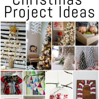 "These 12 DIY Christmas project ideas are beautiful! Definitely adding them to my ""to do"" list!"