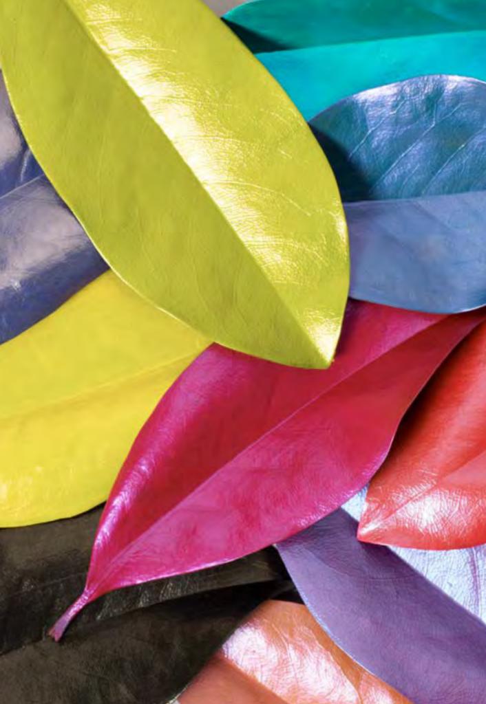 FolkArt Color Shift