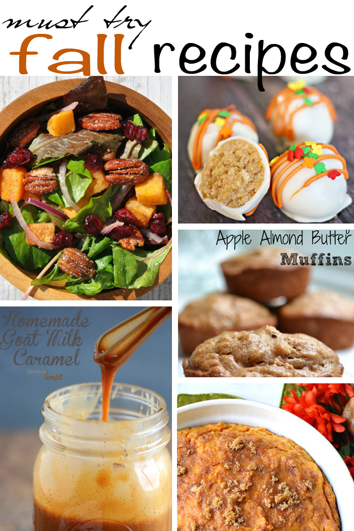 Must Try Fall Recipes + MM&J Link Party {81}