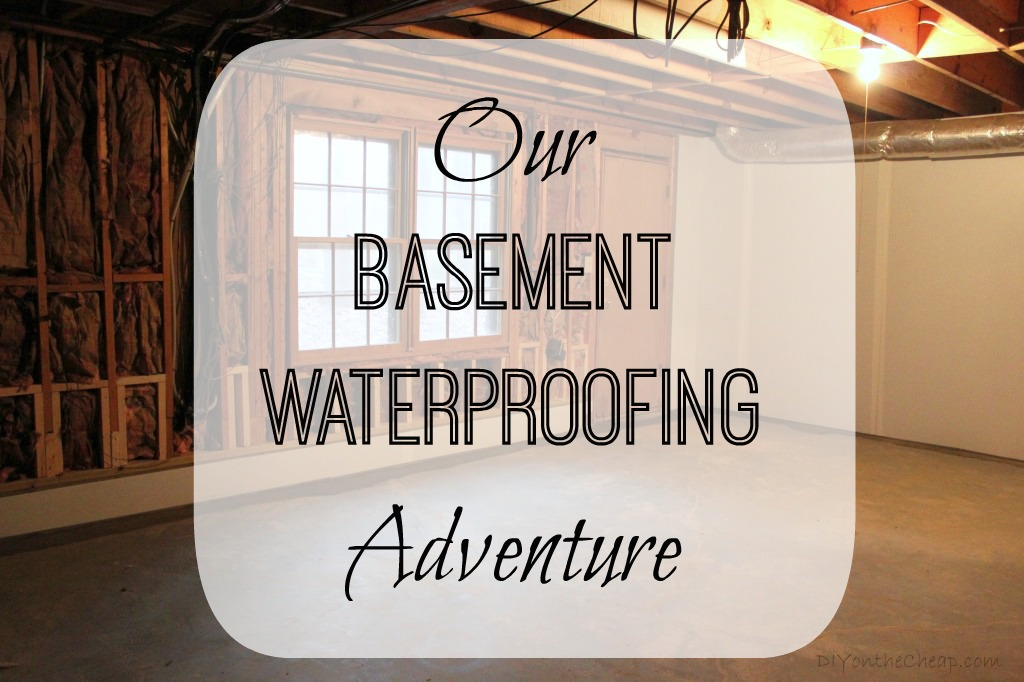 Our Bat Waterproofing Adventure Read This If You Have A
