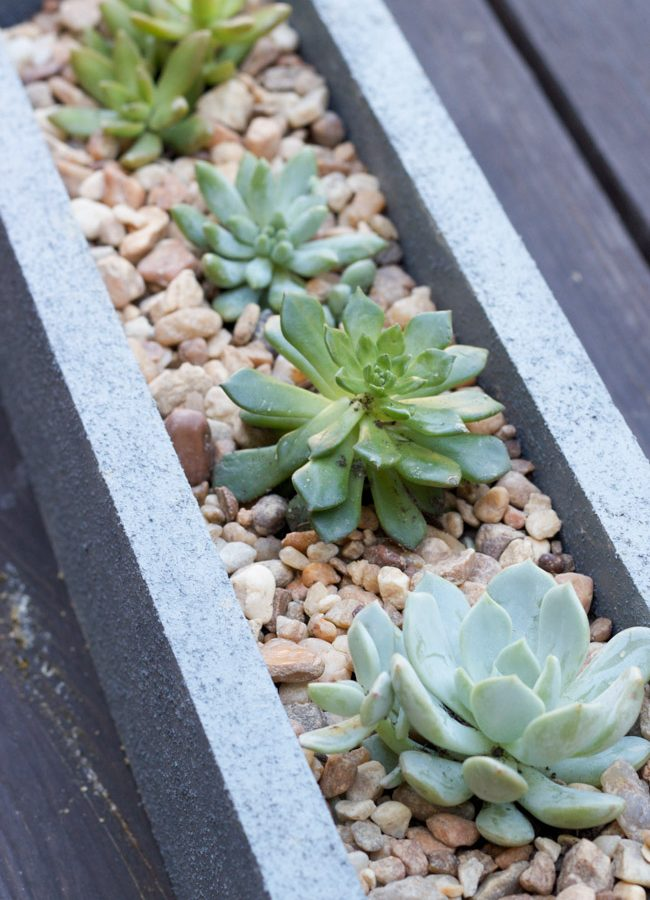 DIY Faux Concrete Planter Tutorial