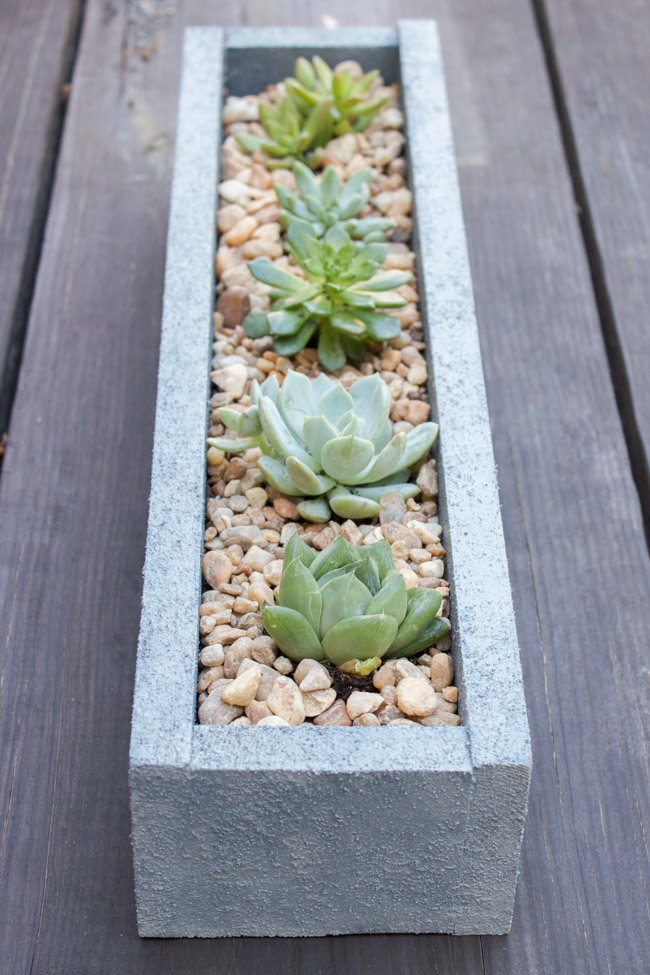 Find out how to make this DIY Faux Concrete Planter using FolkArt® Painted Finishes!