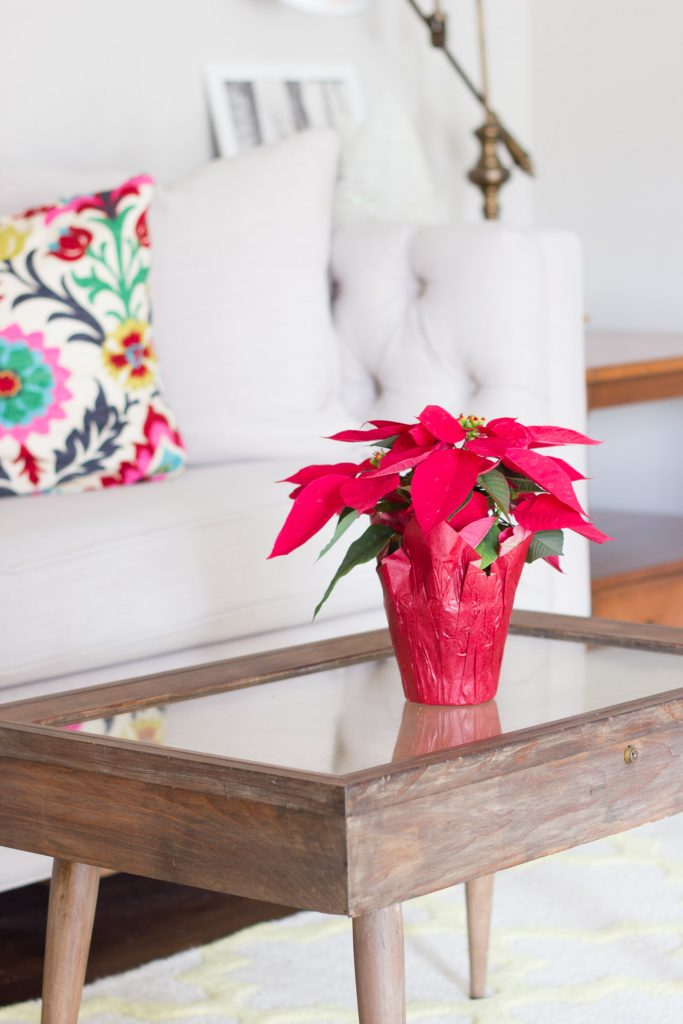 This room is the perfect of example of how to incorporate colorful Christmas decorations into your home for the holidays! And you can't go wrong with a classic red poinsettia.
