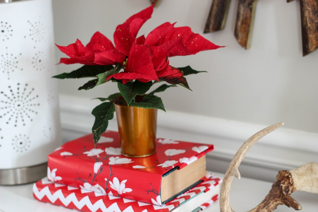 Home for the Holidays Design Challenge: Entryway Reveal