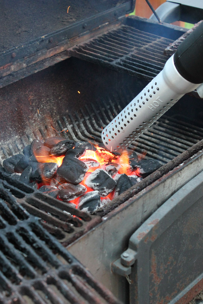 How to light a charcoal grill fast with the HomeRight ElectroLight Fire Starter