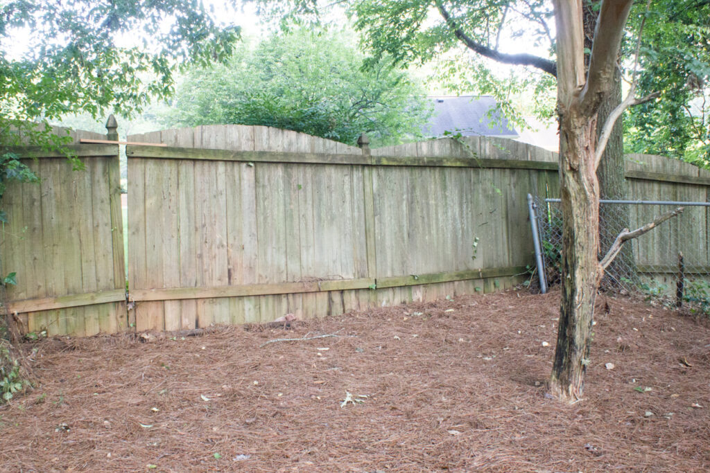 Check out the before and after of my ivy problem and get advice on how to deal with common problems with neighbors!