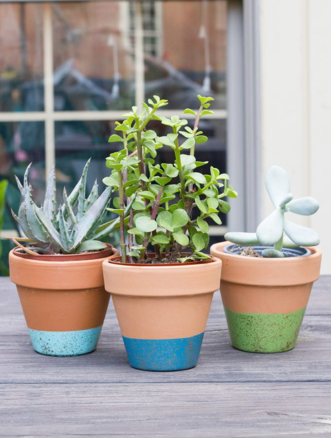 Learn how to make paint-dipped & gold-speckled terra cotta pots!