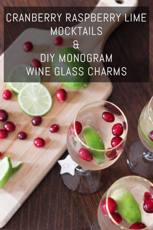 sodastream-mocktails-diy-wine-glass-charms-title-1