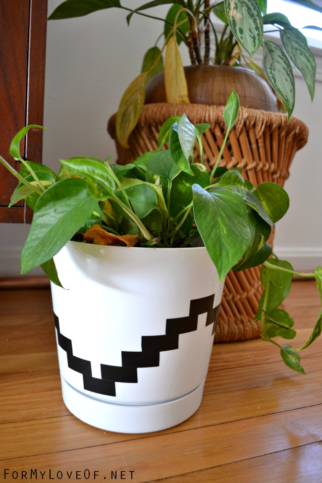 Creative Indoor Planter Ideas for Your Apartment - Embellish a Planter with Electrical Tape